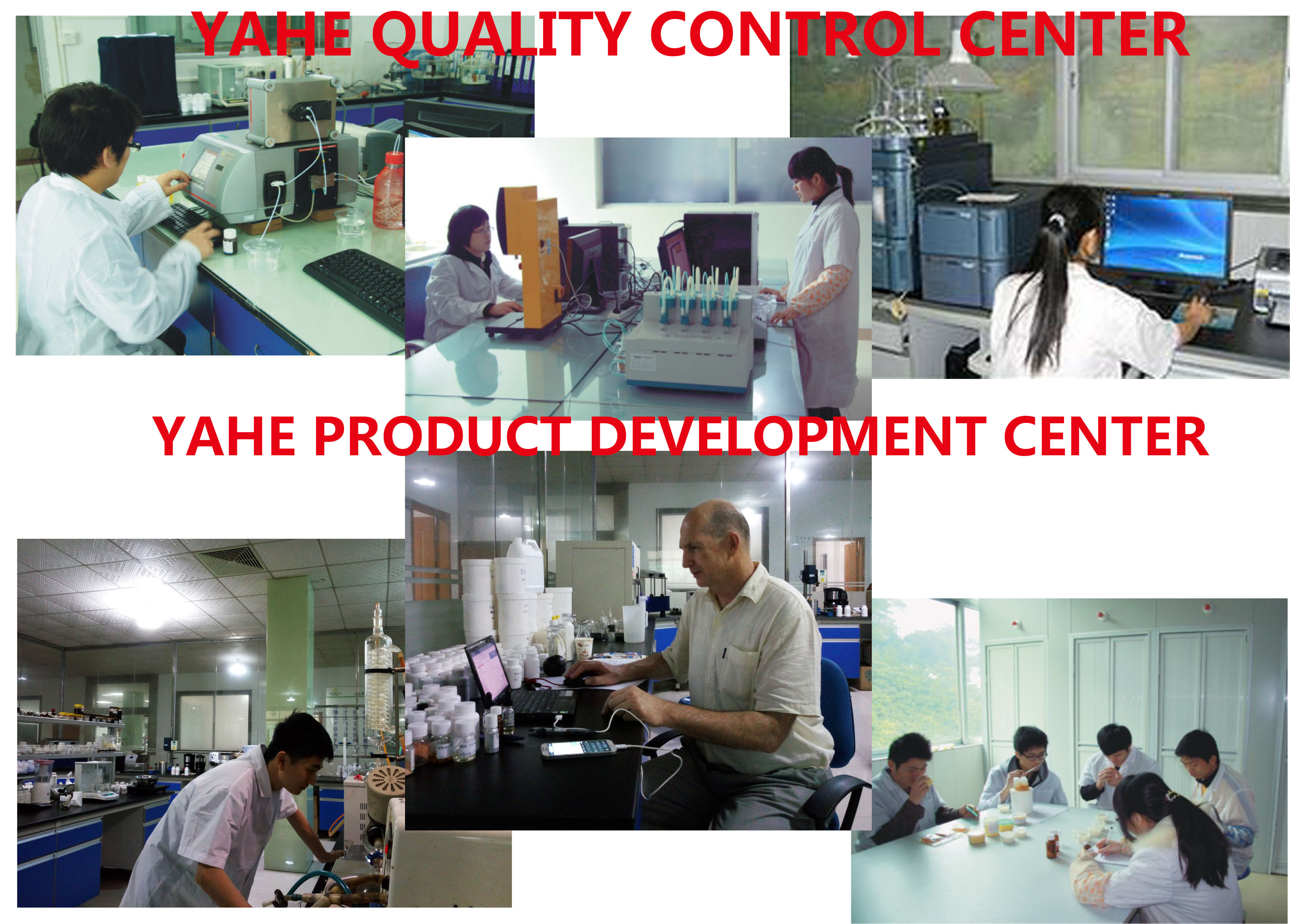 YAHE flavor & fragrance development and QC team